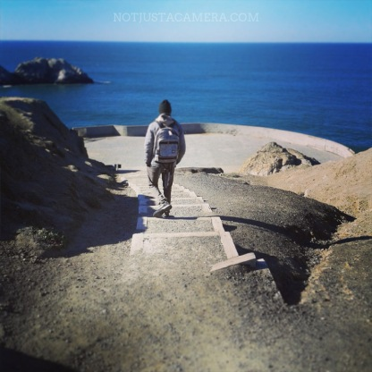 The coastal trail of Lands End is amazing