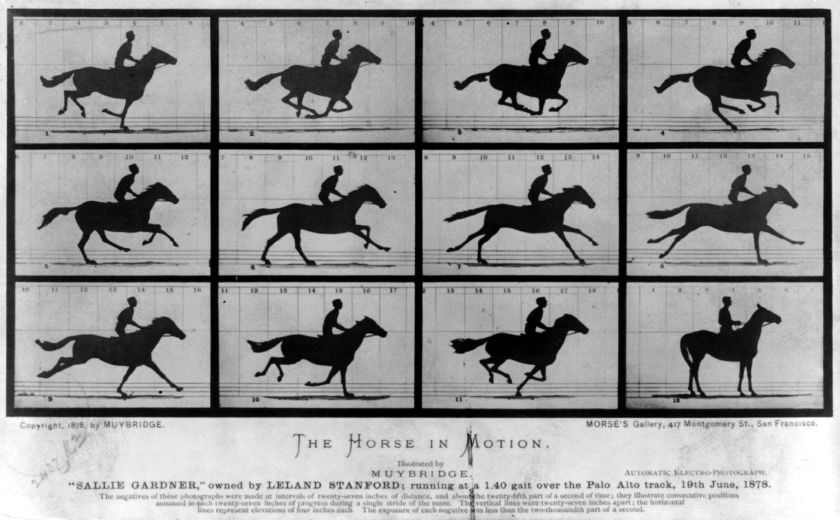Eadweard Muybridge, The Horse in Motion, 1878